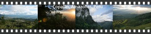 photoframe-copallin