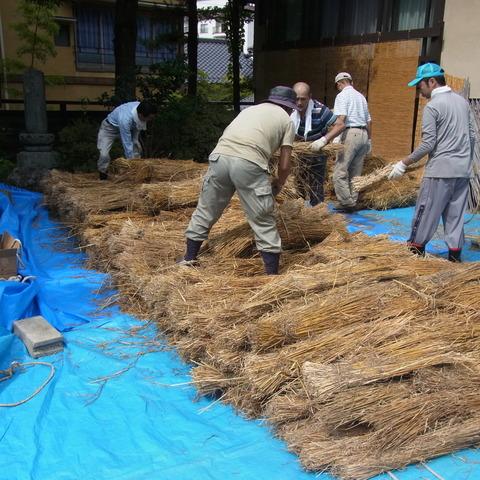 麦わら敷き1