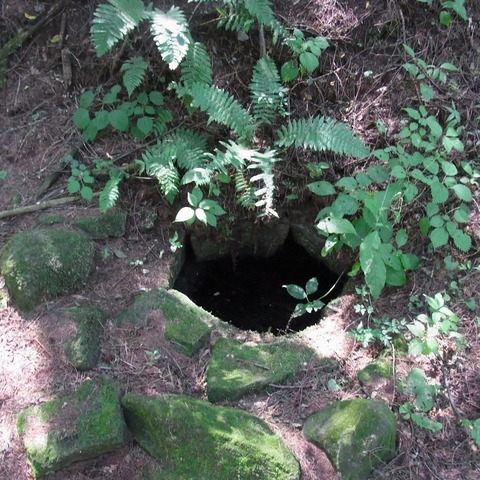 茶屋の井戸