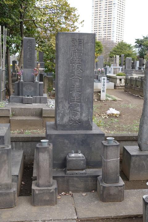 Wikipedia 三坂 咲