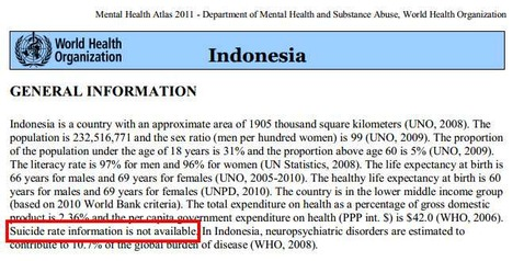 WHO General Information - Indonesia_min