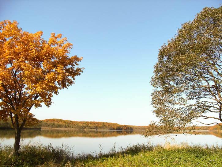 白鳥湖遊園地-61
