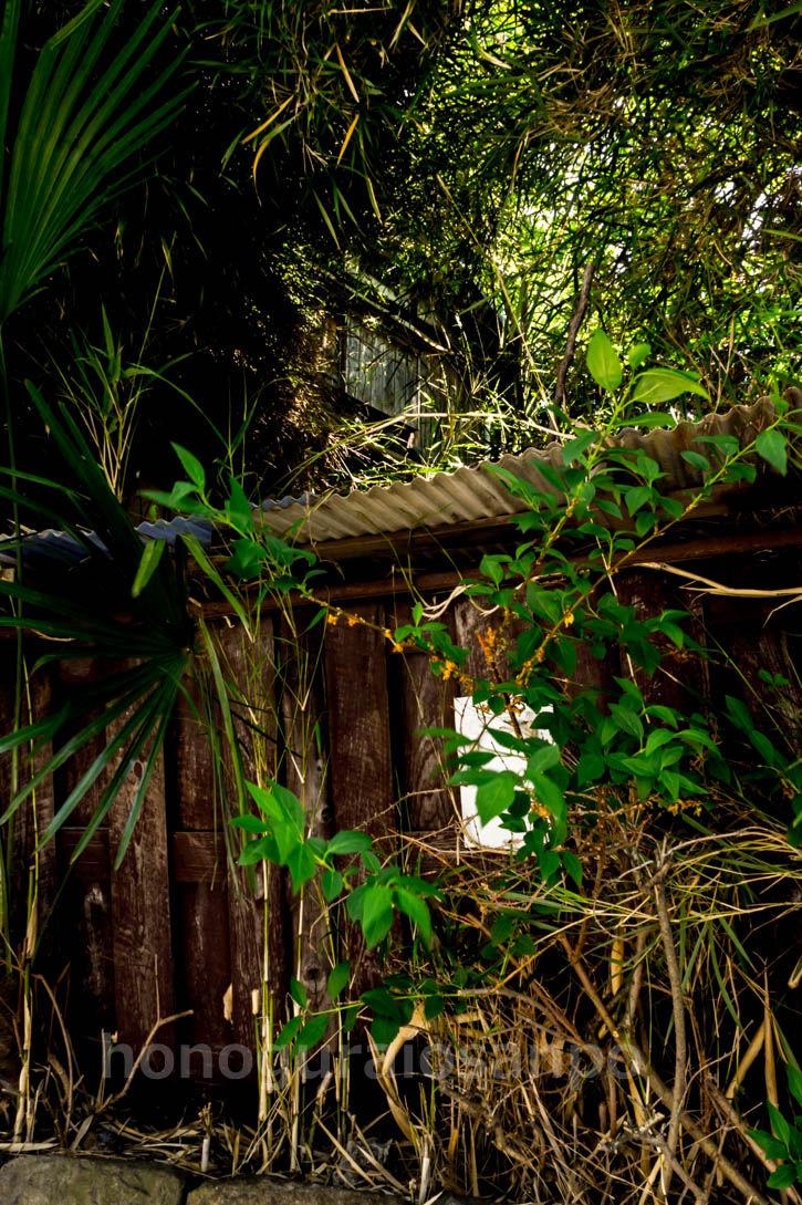 カローラ廃屋 フェンス