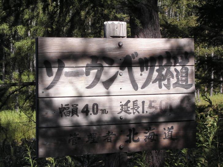 ソーウンベツ林道