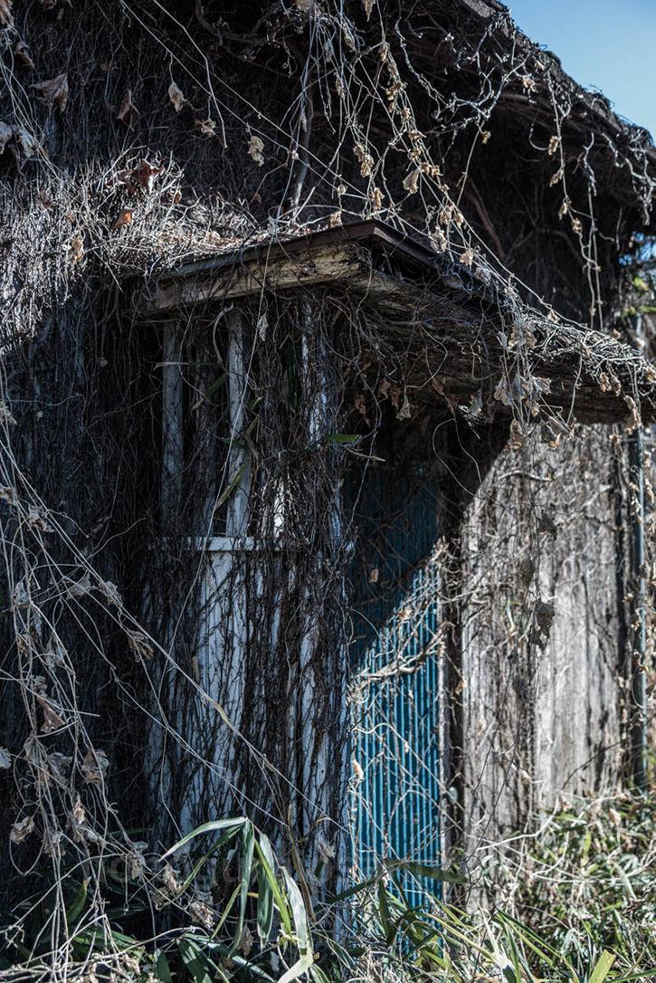 深大寺裏の廃屋-33