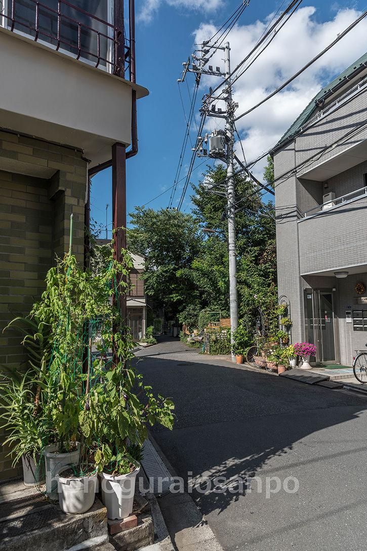 新宿集落-39