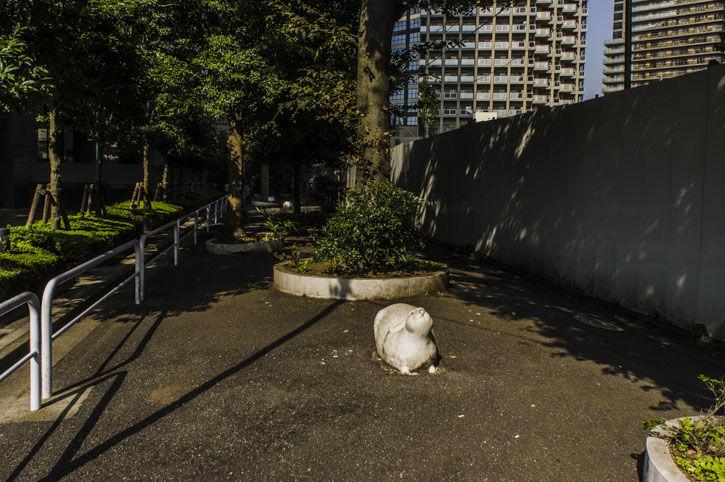 西新宿 ひろゆきハウス 淀橋町会の後ろ