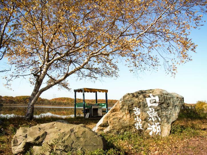 白鳥湖遊園地-7