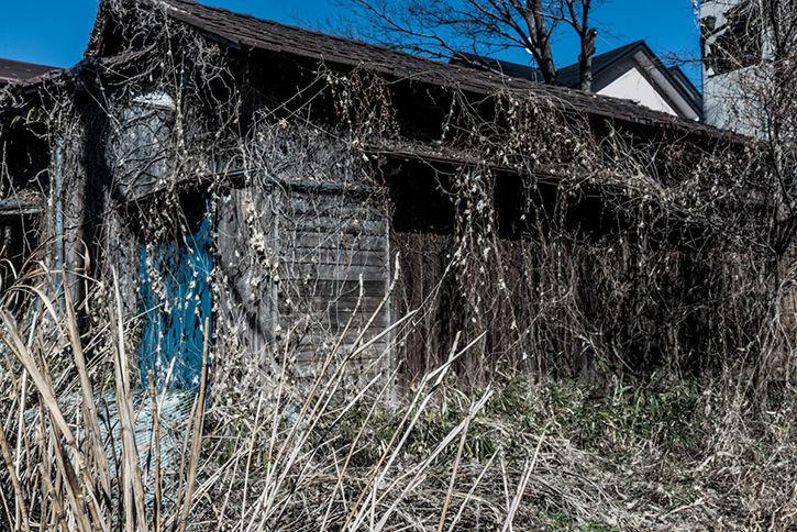 深大寺裏の廃屋-2