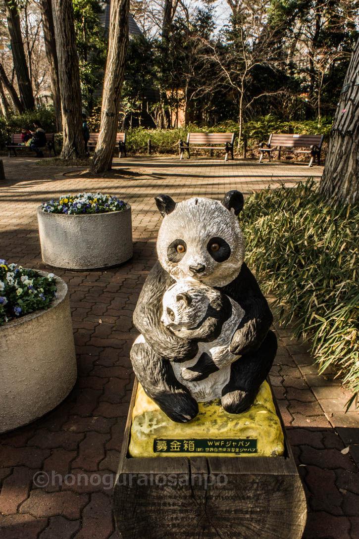 井の頭 パンダ親子1