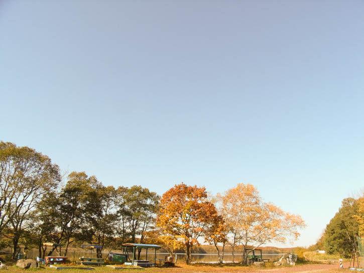 白鳥湖遊園地-65
