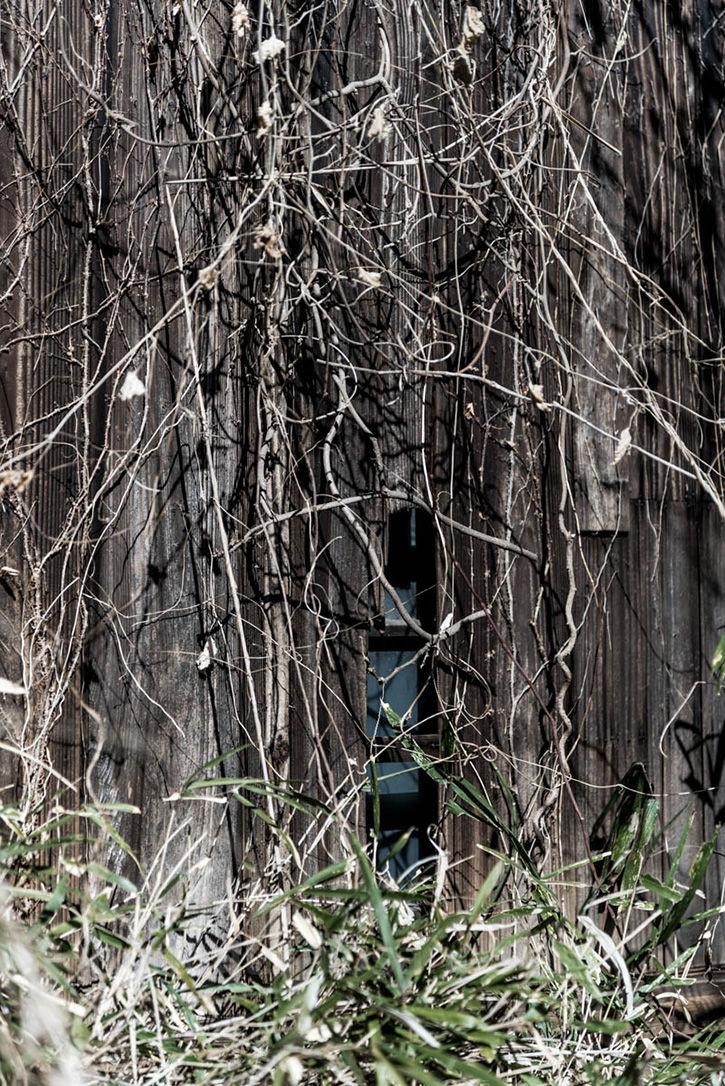 深大寺裏の廃屋-11