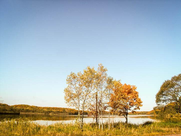 白鳥湖遊園地-55