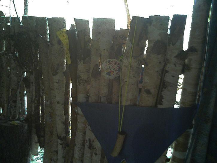 チニカ山荘 白樺壁