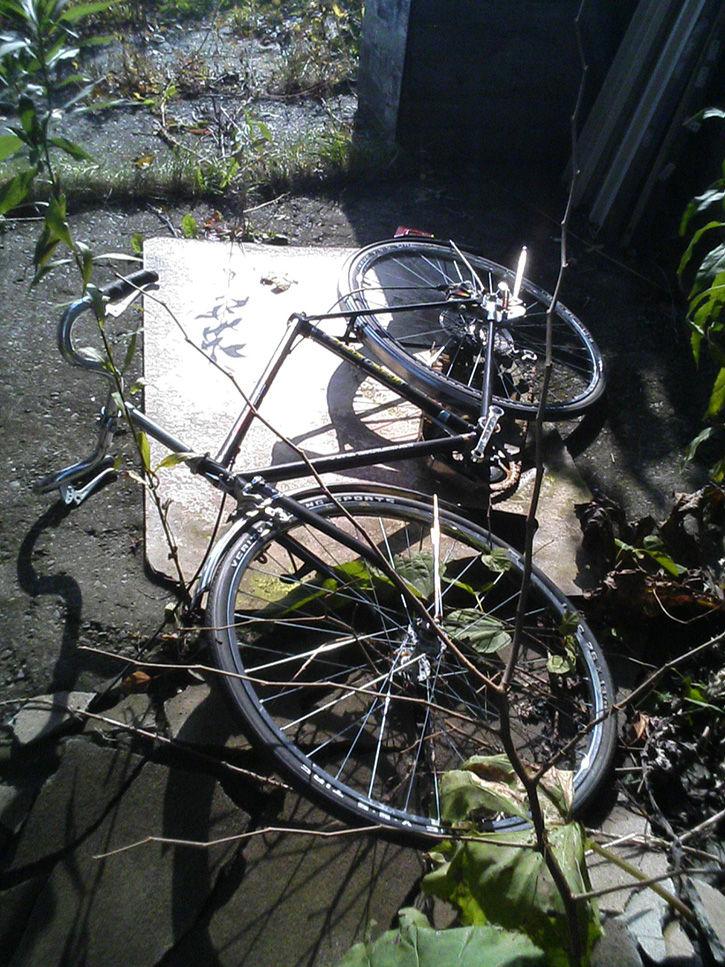 夕張 自転車