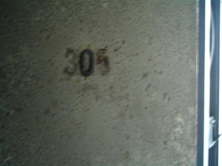 ホテルニュージャパン 305