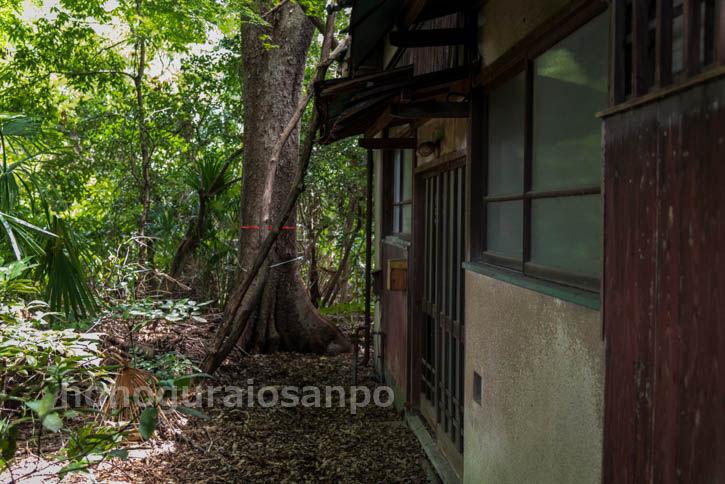 富士見ヶ丘レタ-56