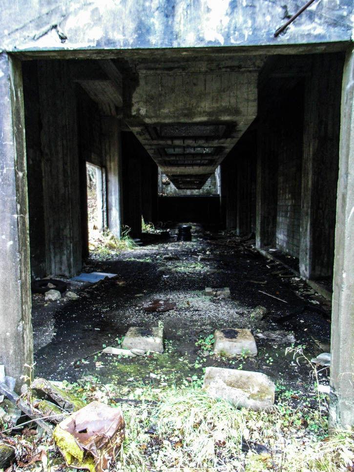 明治庶路炭鉱-41