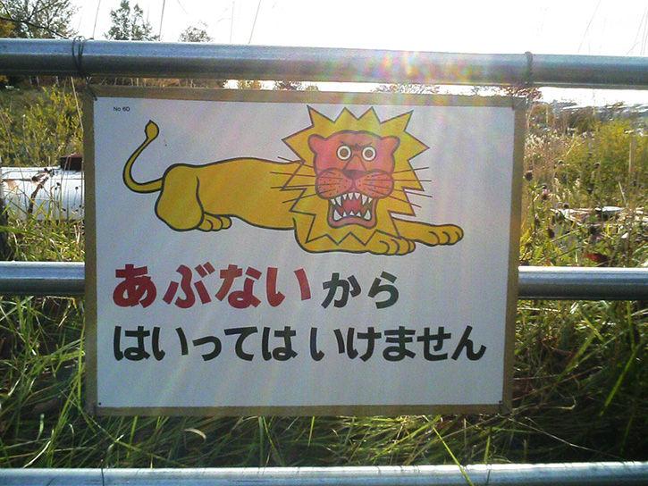 洞爺湖幼稚園 ライオン
