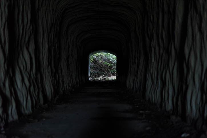 行川アイランド-114-42