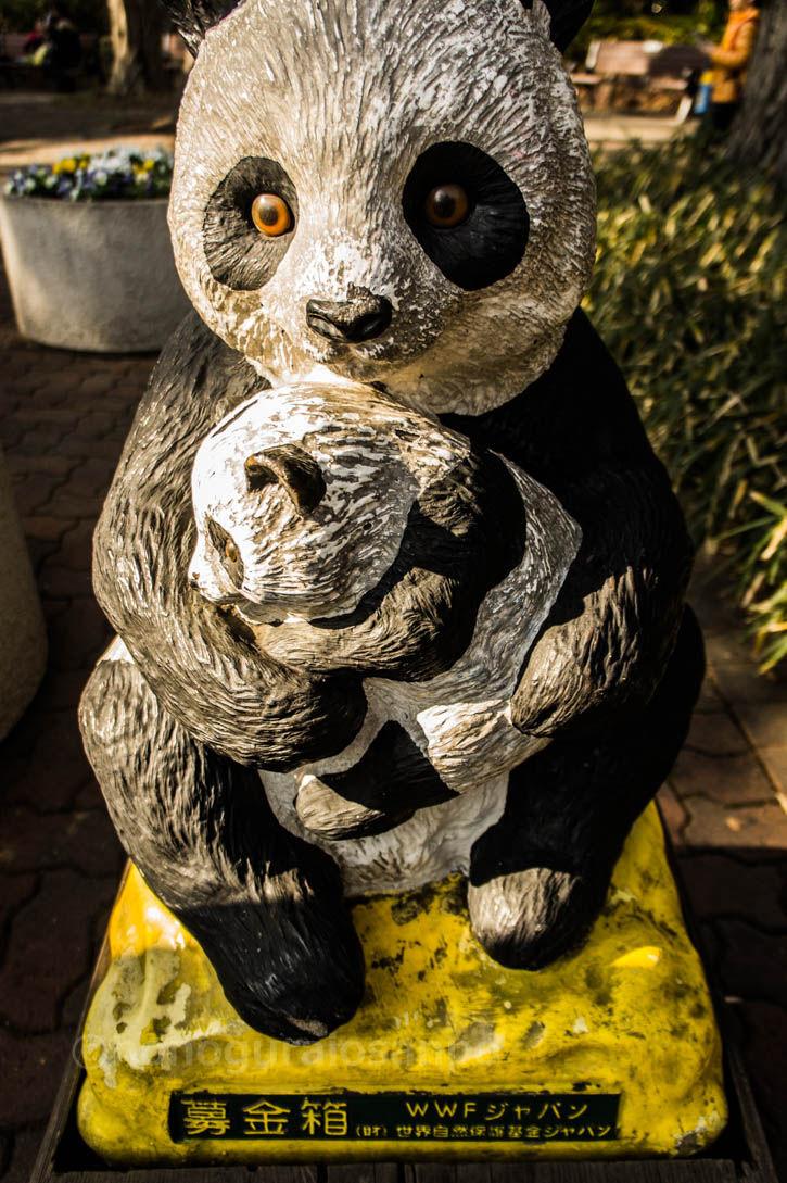 井の頭 パンダ親子2