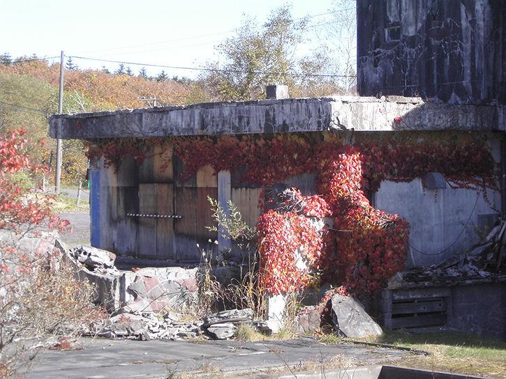 第一滝本館 紅葉