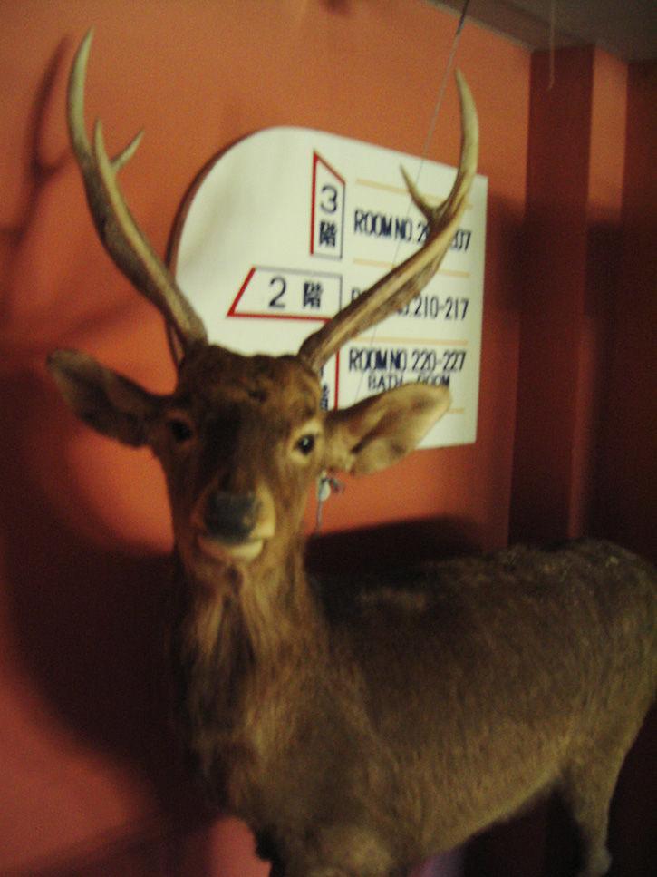第一滝本館 寄鹿