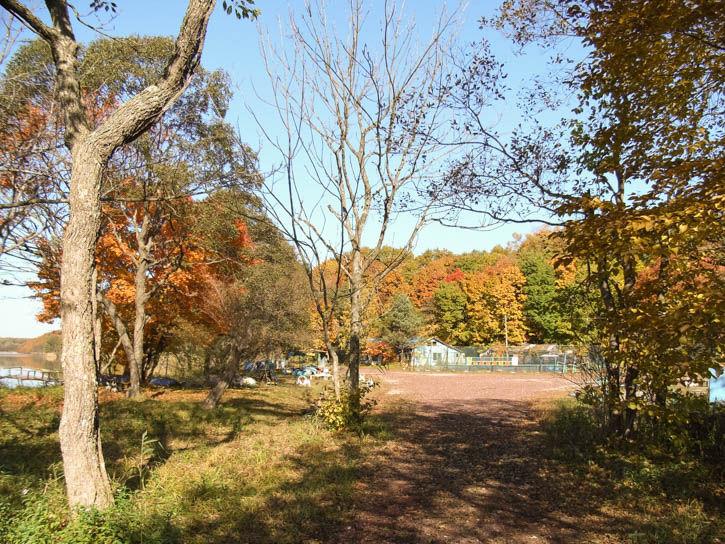 白鳥湖遊園地-62