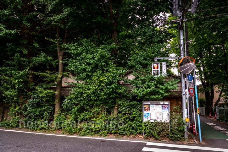 富士見ヶ丘レタ-145