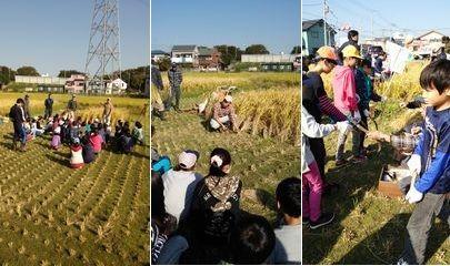 稲刈り体験_002