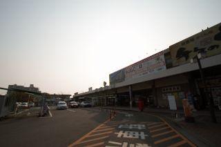 IMG_6781 (320x213)