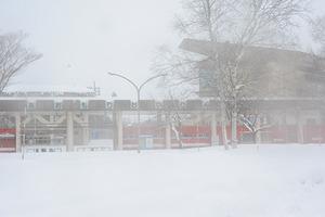 20140112_青森雪上3時間レース_27