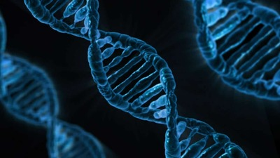 three-dna-that-is-colored-blue