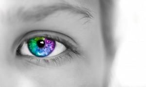 Colorful-iris-free-license-CC0-980x583-e1471164306272