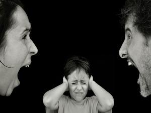 なんJ民が結婚しない理由「仲の悪い両親を見て育った」「鬱病が遺伝したら子供がかわいそう」