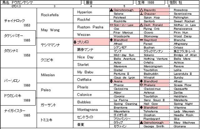 ドウカンヤシマ.jpg
