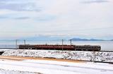 冬の琵琶湖畔を行く113系