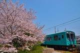 桜の青野ケ原駅