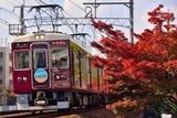 モミジと阪急電車