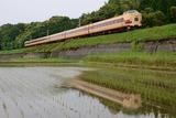 国鉄特急色の水鏡
