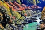 紅葉の保津峡とトロッコ列車