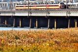 秋の上淀川橋りょう