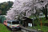 桜の日当駅