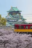 桜と京阪特急