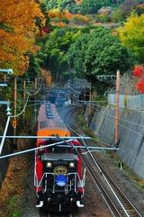 紅葉の小倉山とトロッコ列車