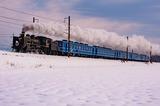 雪原を走るC56