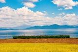 晩夏の琵琶湖と113系