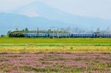 姉川築堤を行く「SL北びわこ」