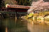 桜と「きのさき」
