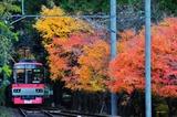 紅葉の二ノ瀬_2012